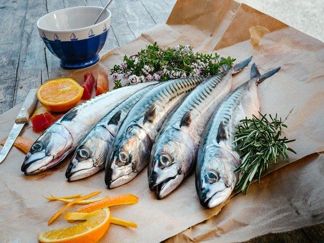 Makrele küchenfertig